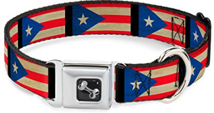 "(AK, HI, PR Only) Buckle-Down Seatbelt Buckle Dog Collar - Puerto Rico Flag Weathered - 1"" Wide - Fits 15-26"" Neck - Large"