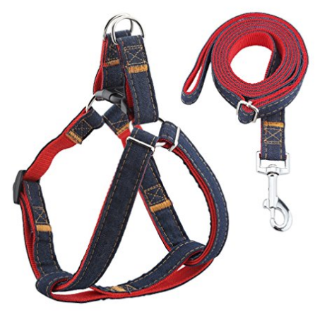 URPOWER Adjustable Harness & Leash