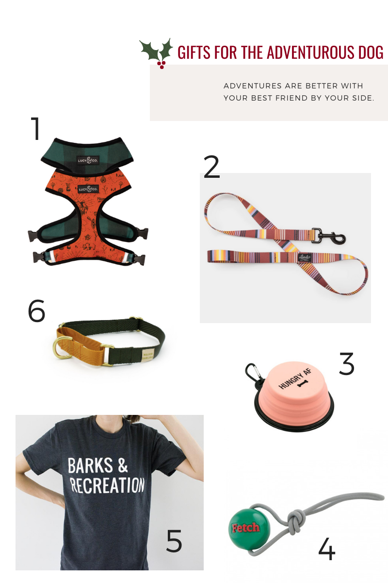 Gifts for the Adventurous Dog Hunter & June Holiday Gift Guide 2019