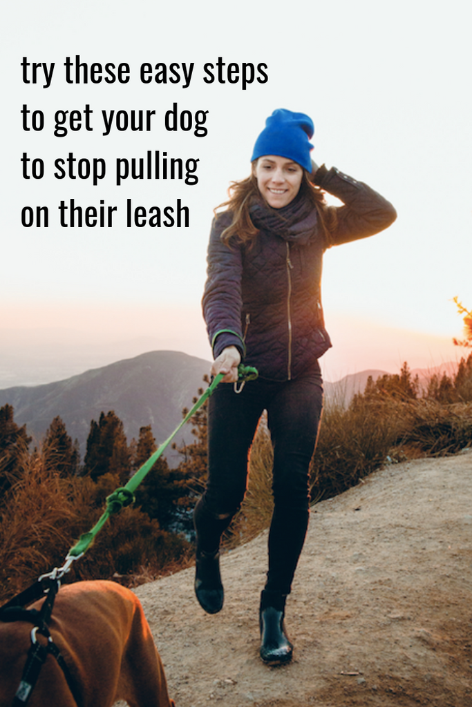 how to get your dog to stop pulling on their leash