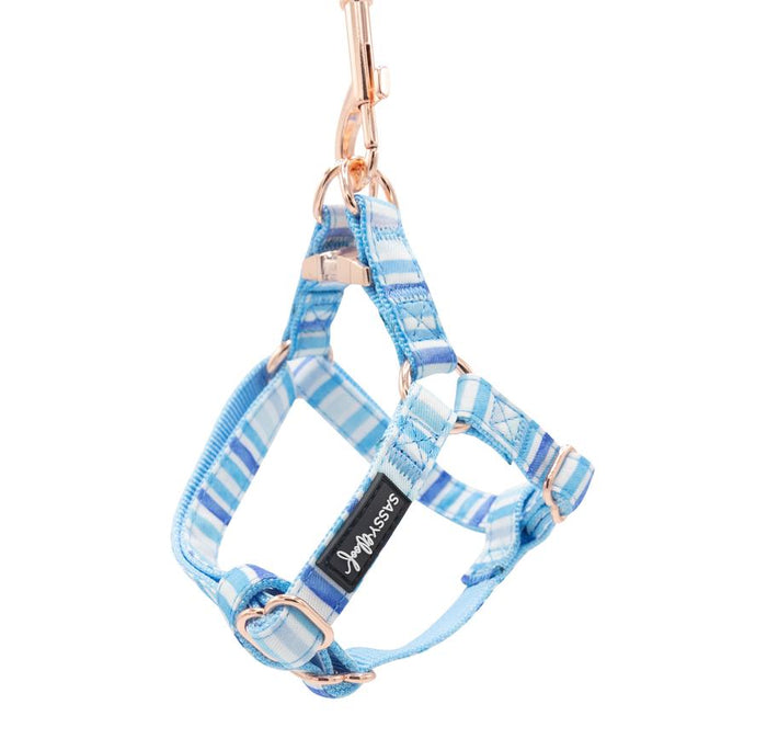 Blue Stripe Step-In Harness