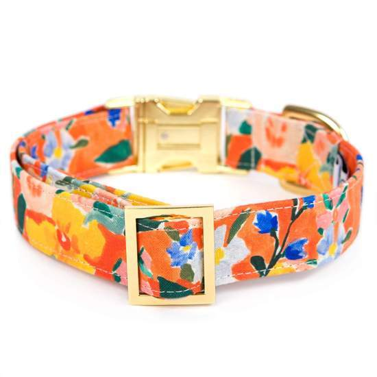 Clementine Floral Collar