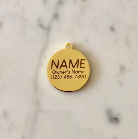 Hello My Name is Good Boy Charm/ID Tag