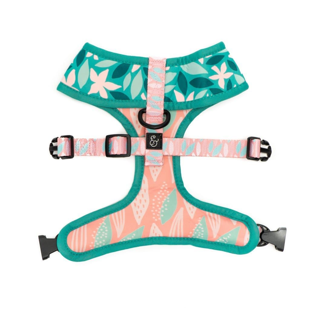 Lily Reversible Harness