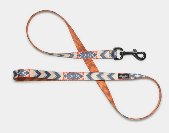 Arroyo Leash