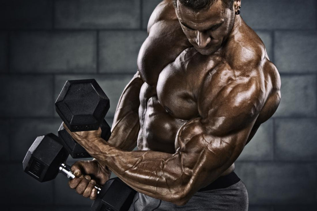 All you need to know about Testosterone Cycle Dosage Test E