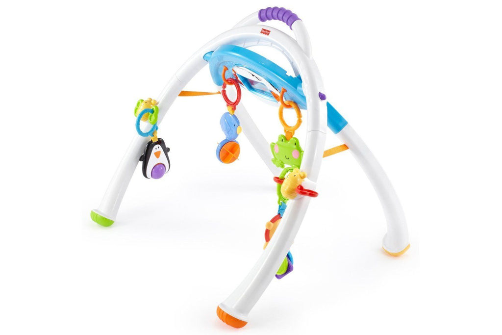 Fisher-Price Apptivity Gym for iPhone & iPod Touch Devices