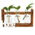 Propagation Station Glass Planter Terrarium Tabletop Planters in Wood Stand