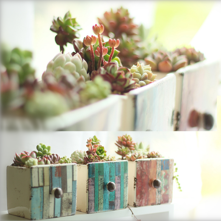 Pack of 3 Planters Colorful Stripe Drawer Style Succulents Planter Vintage Cactus Container