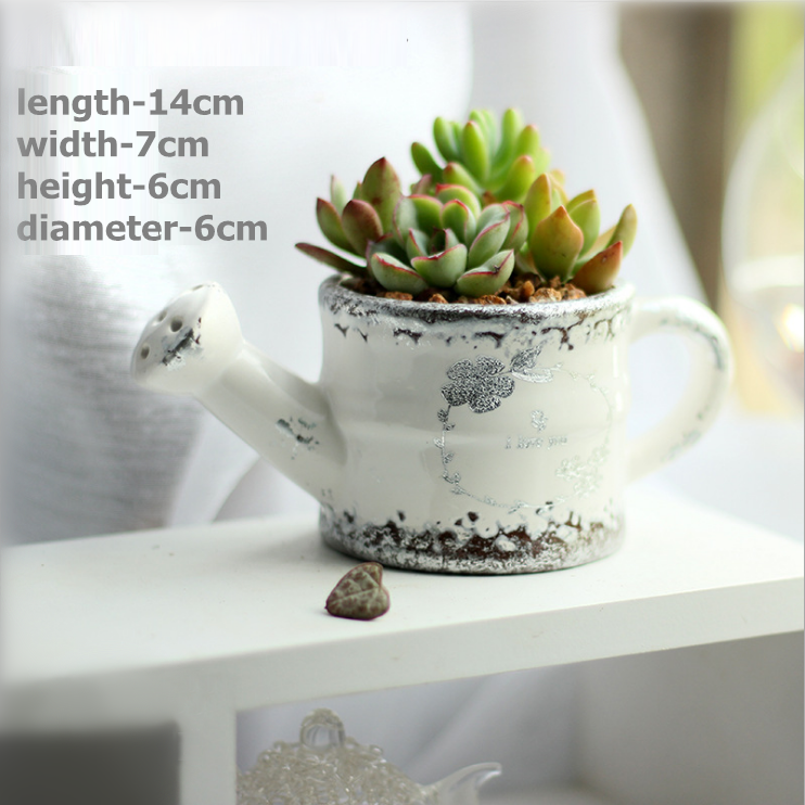 Cute Succulent Planter Pack of 6 Pure Silver and White Modern Planter Cactus Container