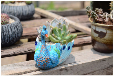 Pack of 2 Resin Handmade Small Peacock Succulent Planter Cactus Decorative Planter