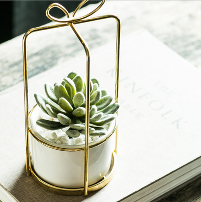 Succulent Planter Perfect Container with Metal Holder Bowknot Gift Style Indoor Decorative Planters