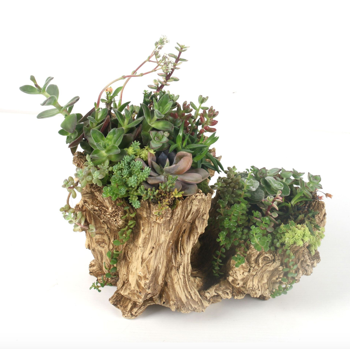 Vintage Stump Log Planter Pot Driftwood Planter Resin Faux Wood Succulent Container Flower Pot