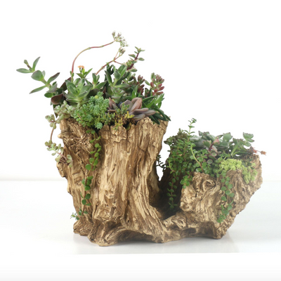 Vintage Stump Log Planter Pot Driftwood Planter Resin Faux Wood Succulent Container (Q)