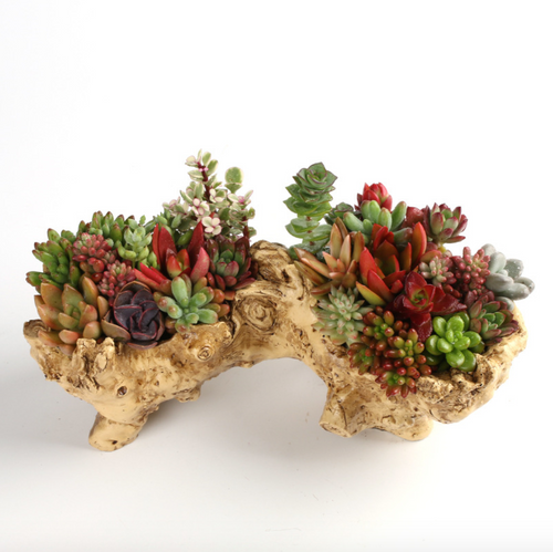 Unique Driftwood Planter Resin Flower Planter Faux Wood Succulent Container Planter Stump Log Planter Pot (K)