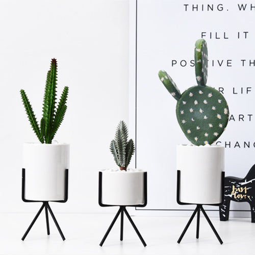 Modern Succulent Planter Pack of 3 Ceramics Container with Black Iron Rack Modern Planters