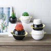 Black and White Earth Shape Succulent Planter Set Pack of 3 Modern Home Decorative Planters