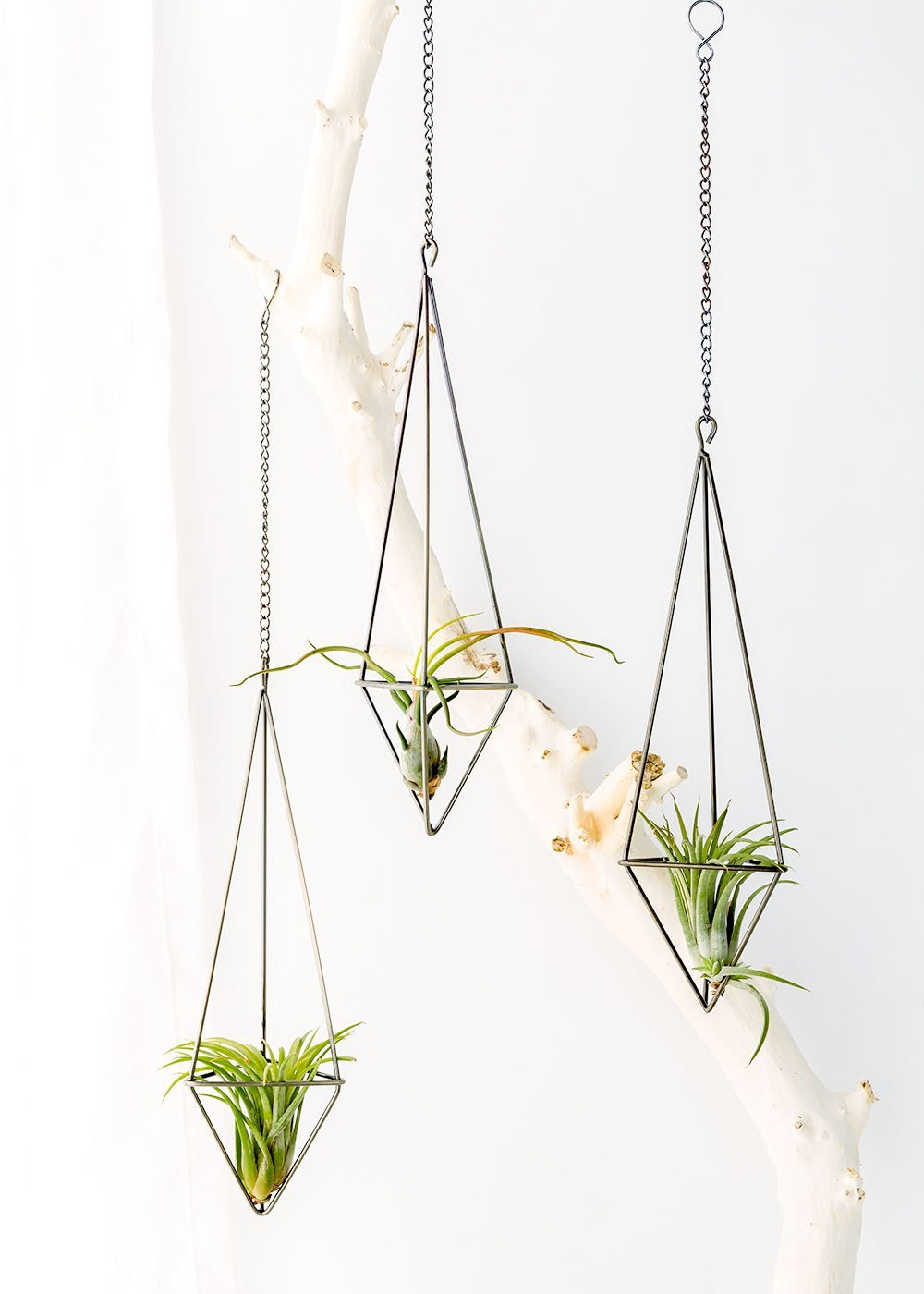 3 Pack Hanging Air Plant Holder Tillandsia Container Air Plant Stands