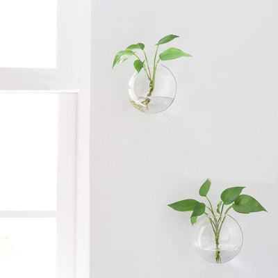 Decorative Wall Hanging Glass Planter Glass Air Plant Terrarium Glass Vase