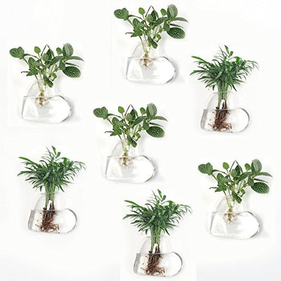 Pack of 7 Heart Shape Glass Hanging Plant Containers Wall Hanging Planters