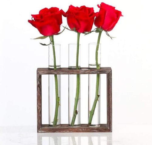 Wall Mounted Hanging Planter Test Tube Flower Bud Vase in Wood Stand