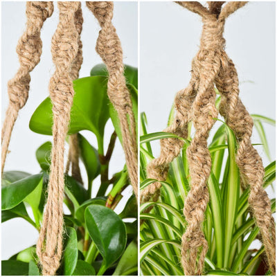 Pack of 3 Handmade Two Layers Macrame Jute Plant Hangers Hanging Planters Plant Holders for 2 Pots, 40 Inch