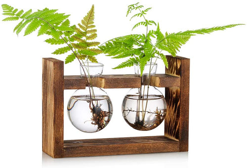 Propagation Station Glass Planter Vase Terrarium Tabletop Planter in Wood Stand