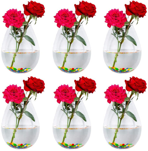 Pack of 6 Glass Wall Hanging Planters Glass Plant Terrarium Indoor Planter