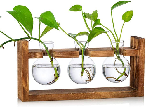 Propagation Station Glass Planter Vase Terrarium Tabletop Planters