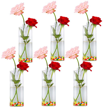 Pack of 6 Wall Hanging Glass Planters Cylindrical Shape Plant Pots