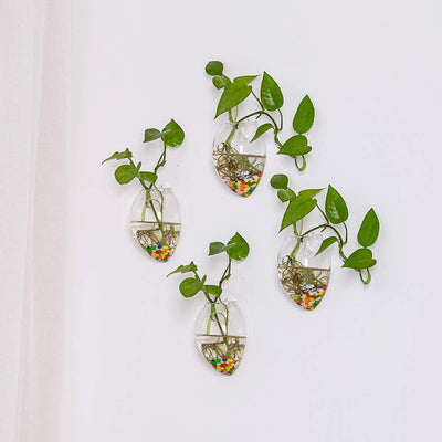 Set of 4 Wall Hanging Planters Hanging Glass Plant Pots Wall Glass Terrariums