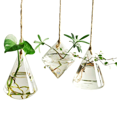 3 Pieces of Glass Plant Pots Hanging Planters Hanging Glass Terrariums