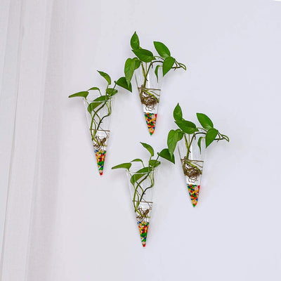 Pack of 6 Wall Hanging Glass Planters Cone Shape Plant Pots