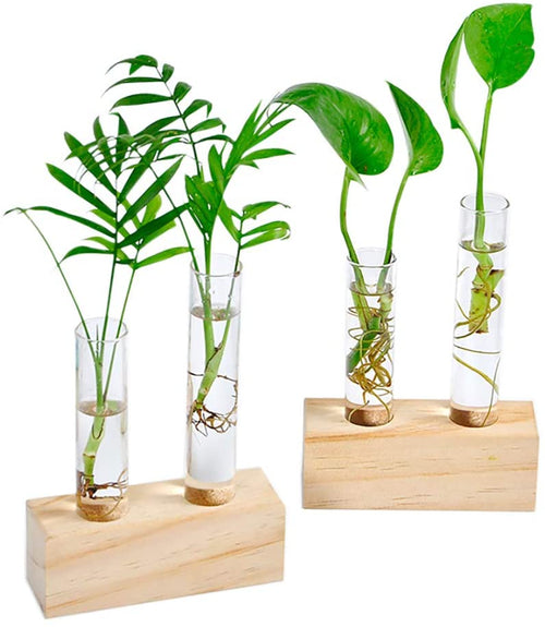 Glass Double Test Tube Vase in Wooden Stand Flower Pots for Hydroponic Plants