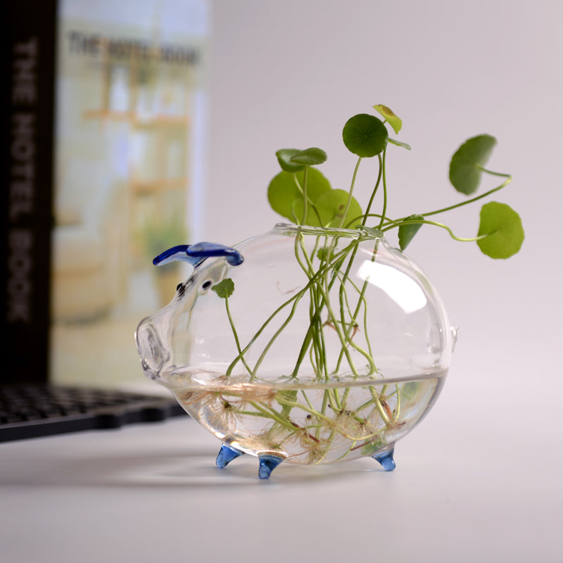 Decorative Tabletop Glass Planter Glass Flower Pot Plant Containers