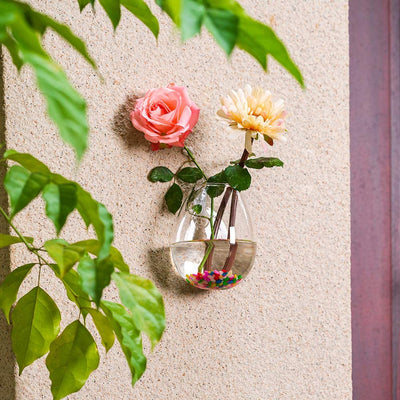 Set of 4 Wall Planters Hanging Planters Hanging Glass Plant Pots Glass Hanging Planter