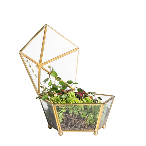 Decorative Multi Purpose Glass Geometric Terrarium Plant Container