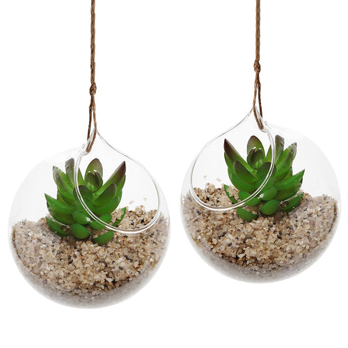 Set of 2 Glass Hanging Planter Decorative Plant Terrariums
