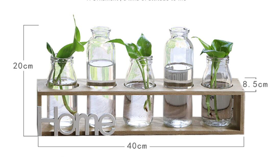 Tabletop Glass Vase Water Plant Containers Glass Plant Terrariums Flower Pots with Wood Stand