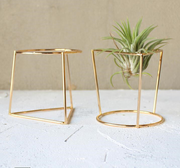 Pack of 2 Tabletop Air Plant Container Air Plant Stands