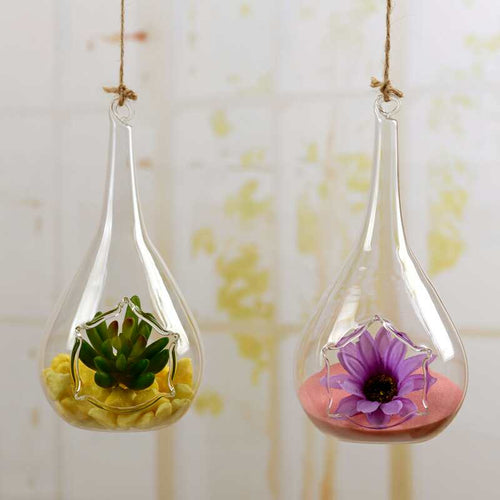 Set of 2 Hanging Planters Glass Plant Containers Hanging Air Plant Pots