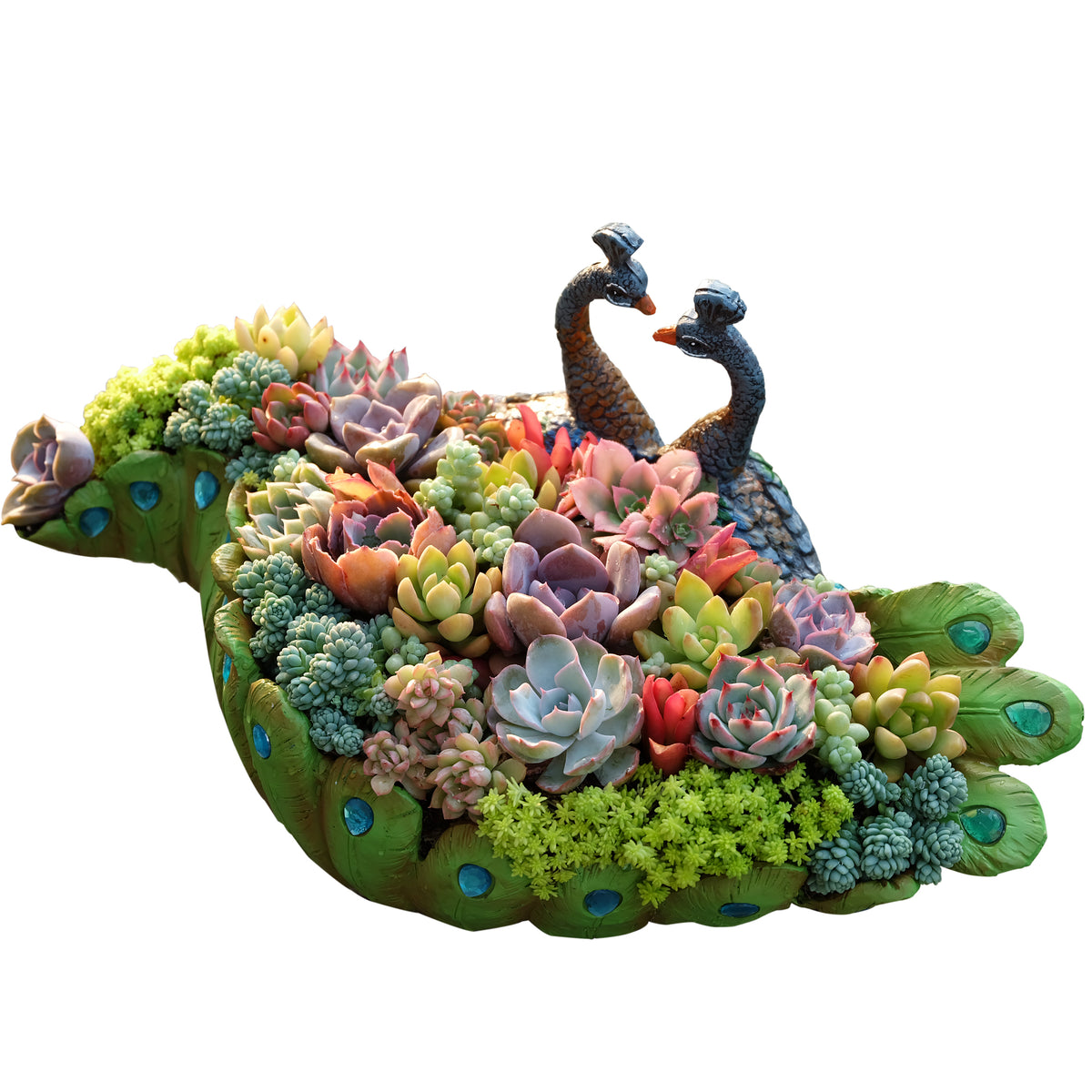 Detailed Large Peacock Succulent Planter Pot Cactus Container Vintage Planter