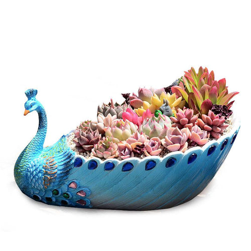 Exquisite Blue Peacock Succulent Planter Cactus Container Succulent Planter