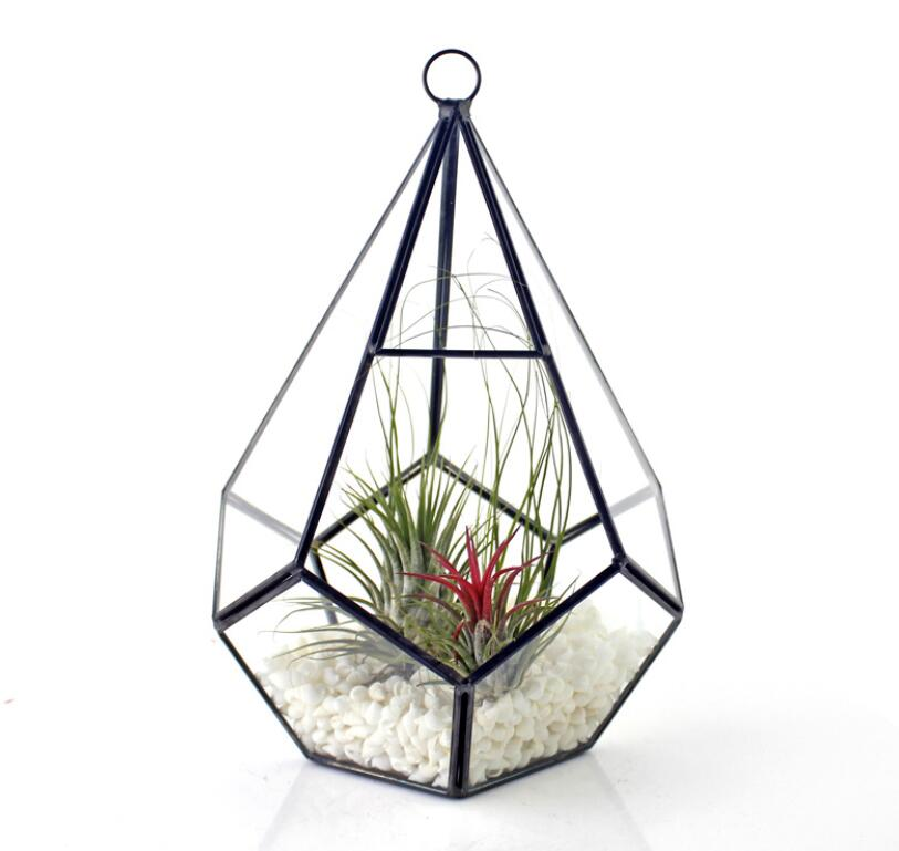 Geometrical Hanging Glass Terrariums Glass Moss Planters Fairy Garden