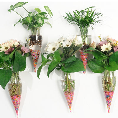 Pack of 3 Wall Hanging Planters Air Plant Pots Glass Terrariums Flower Vases