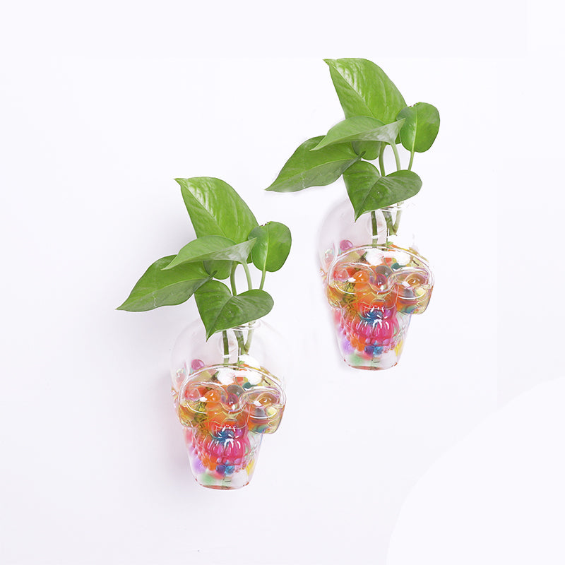 2 Pcs Glass Terrariums Glass Hanging Planters Plant Terrariums Glass Skull Plant Containers