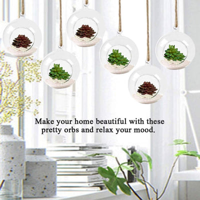 Pack of 3 Hanging Plant Terrariums Round Glass Orbs Planters Hanging Planters