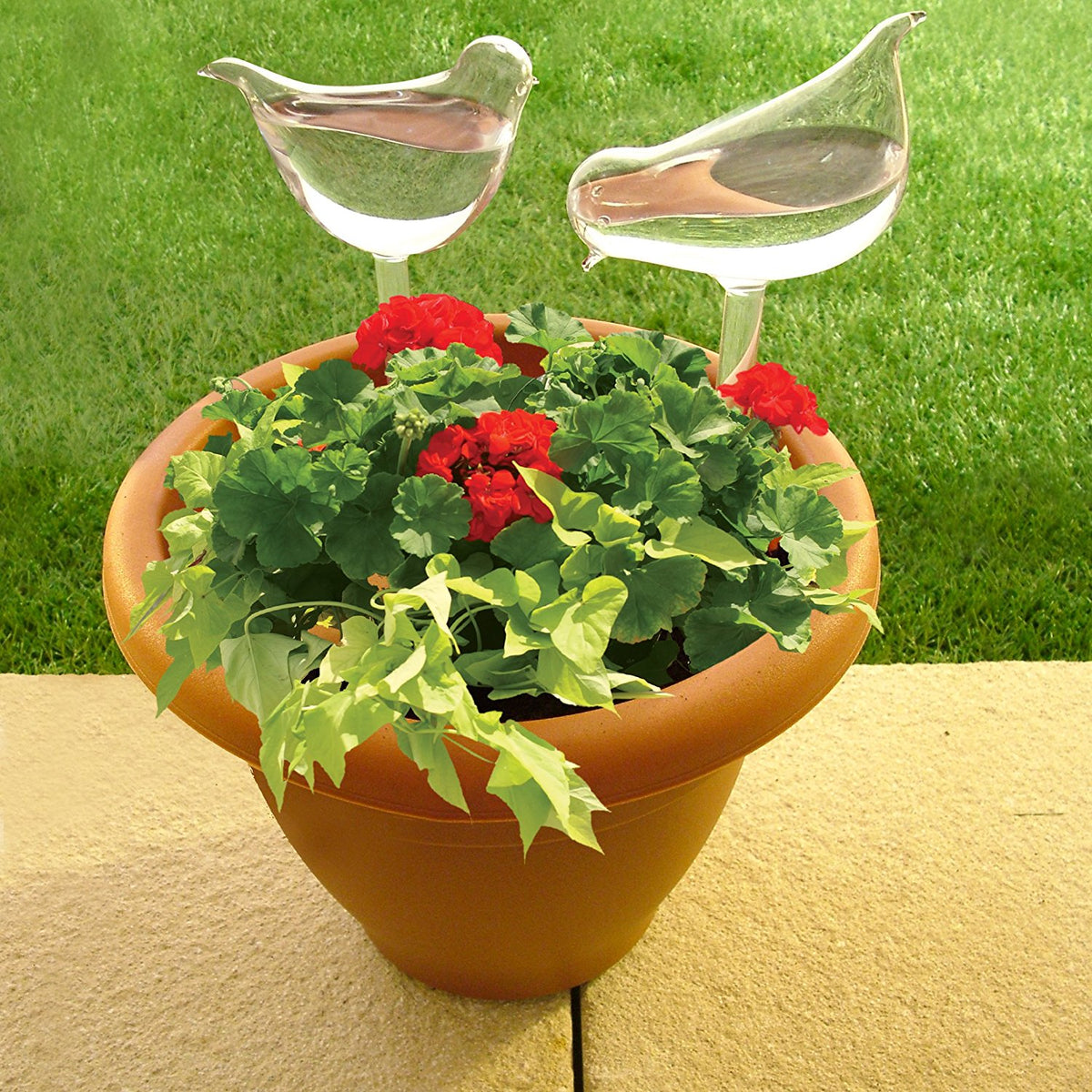 Set of 2 Handmade Glass Bird Waterer For Keeping Your Potted Plants and Flowers Watered