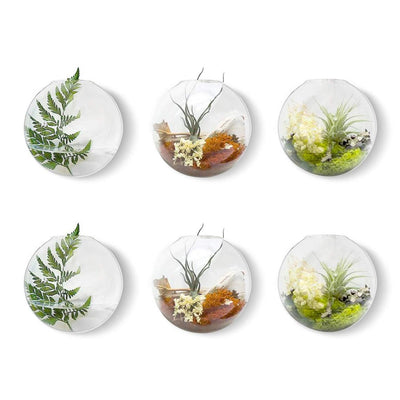 Pack of 2 Gladd Wall Hanging Planters Glass Plant Terrarium Indoor Planters