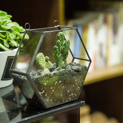 Wall Hanging Planter Geometric Terrarium Hanging Glass Terrarium